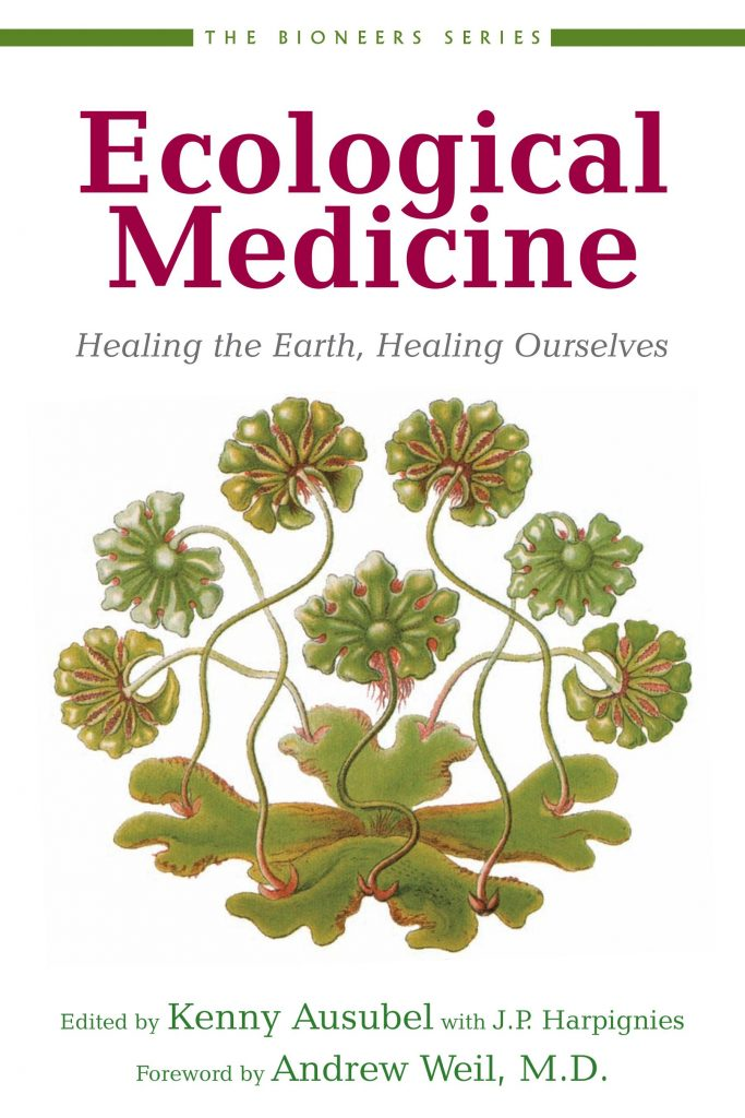 Healing Earth Tarot A Journey In Self Discovery By: Ecological Medicine: Healing The Earth, Healing Ourselves