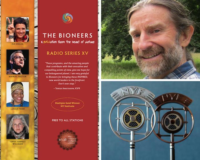 Radio Series Neil Harvey collage