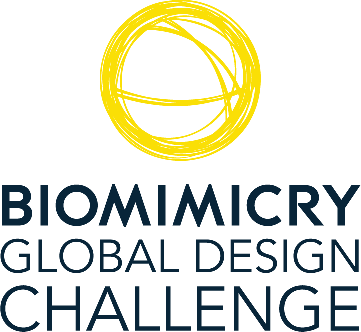 "Bioneers to host the first Biomimicry Global Design Challenge ""Ray of Hope"" Prize awards event"