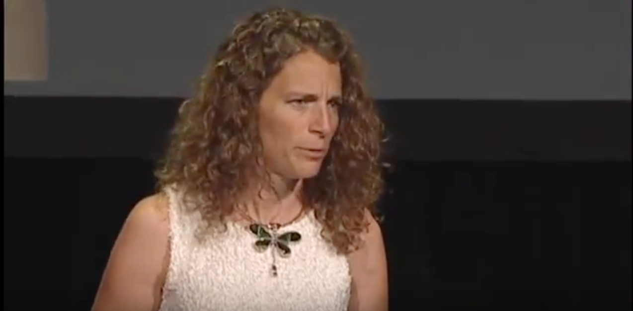 The Biomimicry Institute's Dayna Baumeister speaking at the 2011 Bioneers Conference