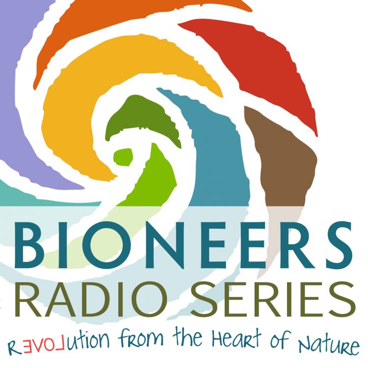 Radio Awards: Put on Your Bionears…