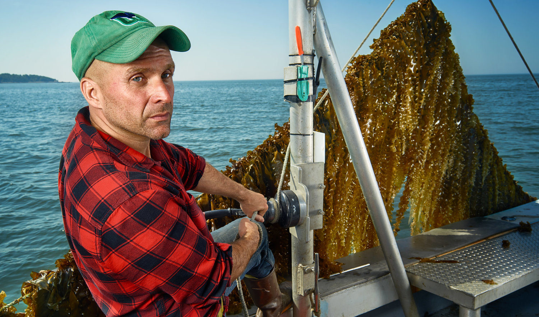 3-D Ocean Farming