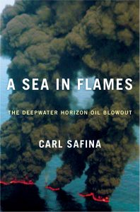 The Far-Reaching Environmental Impacts of Oil Spills