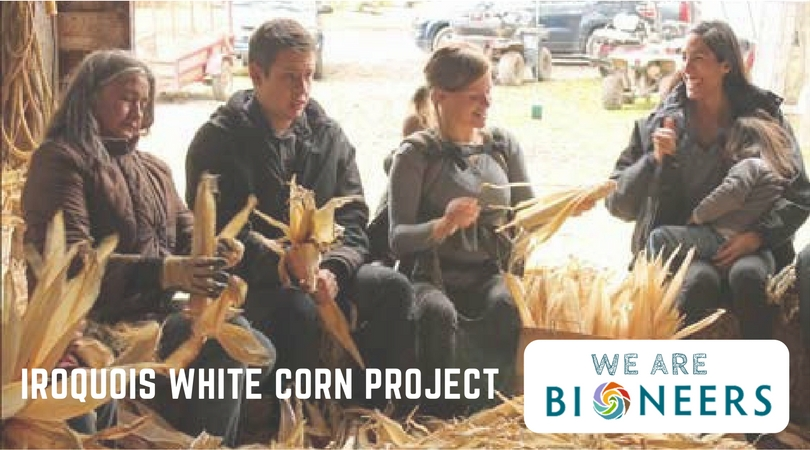 How Bioneers and the Iroquois White Corn Project Brought Native Crops to New Markets