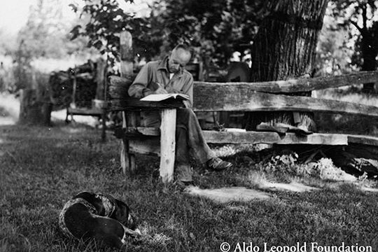 The Will of The Land: Dave Foreman on Aldo Leopold