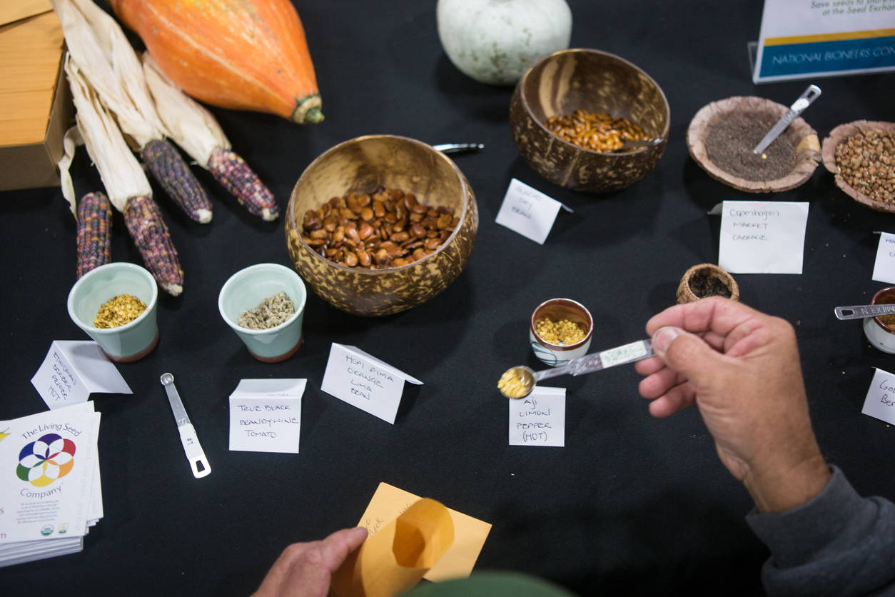 Seed Saving Tips with Sarah McCamant, John Navazio, and Matthew Dillon