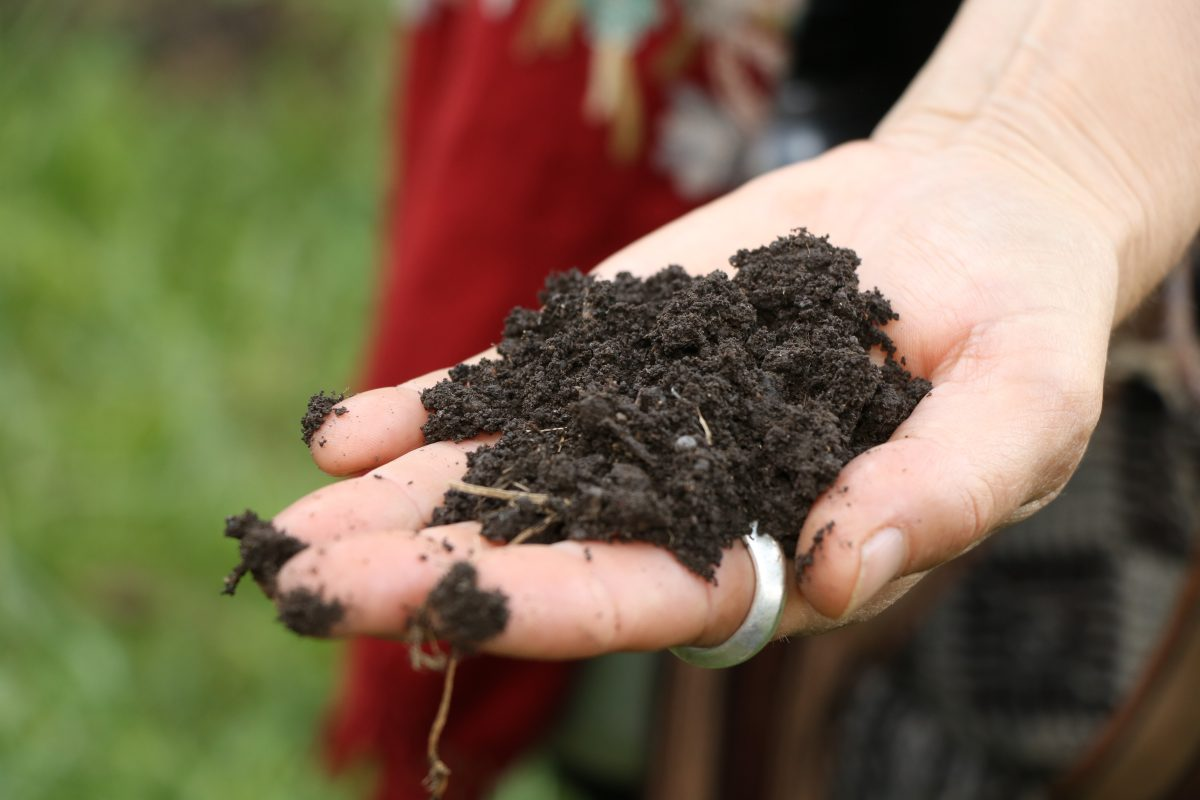 How Soil Health Affects Human Health: An Interview with Dr. Daphne Miller