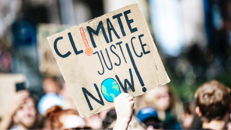 The Bioneers Pulse: Climate Solutionaries Spotlight