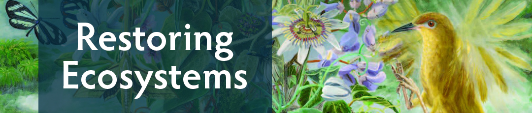 Restoring Ecosystems